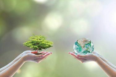 طنز/ مسئولین حامی محیط زیست
